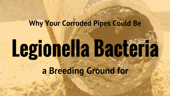 Corroded Water Pipes May Lead to Legionella Bacteria in Drinking Water