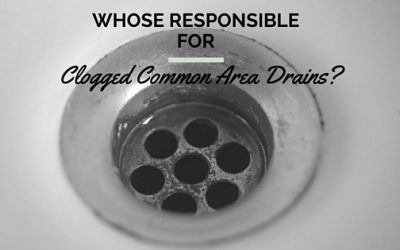 A Property Manager's Responsibility to Clogged Common Area Drains