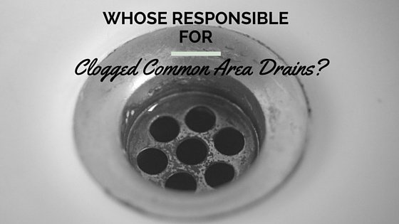clogged_common_area_drains