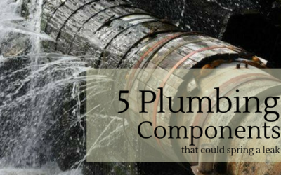 5 Common Leaky Plumbing Components of a Potable Water System