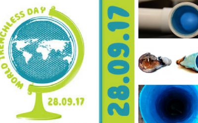 Celebrate Advancements of Trenchless Plumbing on World Trenchless Day