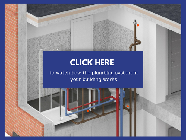 watch how your plumbing system works