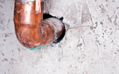Spray-in-Place Pipeline (SIPP) vs. Cured-in-Place Pipeline (CIPP) for Plumbing Leaks